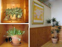 植物のある店内