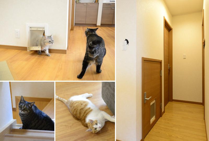 ぬくぬく床暖房にご満悦の猫